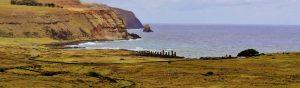TDF-Rapa-Nui-Grassy-Field-Maoi-In-Distance-5-11-20